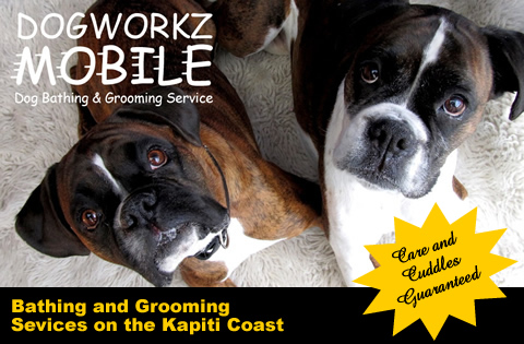 Mobile Dog Groomers Prices